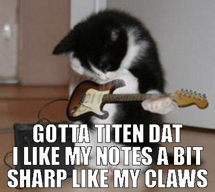 mobile casino cat acoustic meme