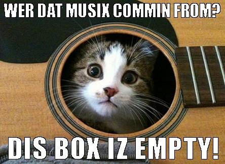 acoustic cat in a guitar mobile casino